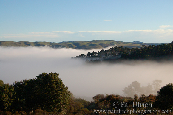 Fog over Tomales Bay State Park 2