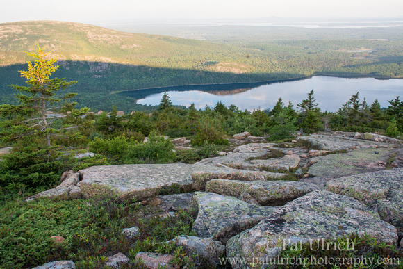 Sunrise on the slope of Sargent Mountain in Acadia National Park