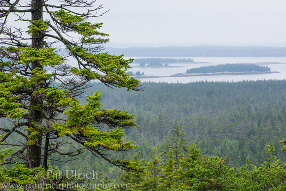 Islands in Frenchman Bay from Schoodic Head in Acadia National Park
