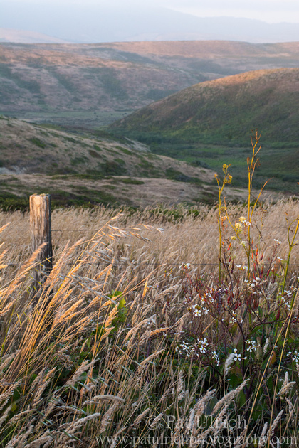 Last light across the valleys of Point Reyes National Seashore