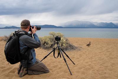 Pat Ulrich photographing Lake Tahoe