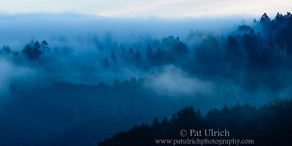 Fog rolls over Inverness Ridge, Point Reyes National Seashore