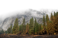 Foggy day in Yosemite Valley