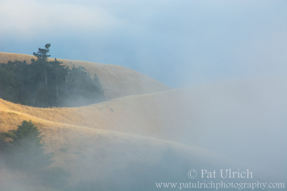 Fog rolling over the hillsides of Mt Tam at sunset