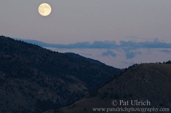 Full moon rising over the mountains at dusk in Yellowstone National Park