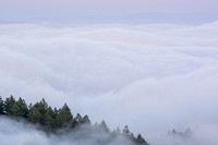 Above the rolling fog