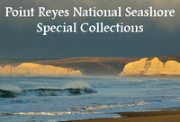 Point Reyes National Seashore Photography
