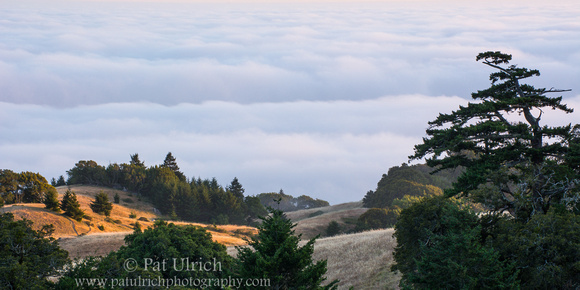 Sunset above the fog on Mount Tam