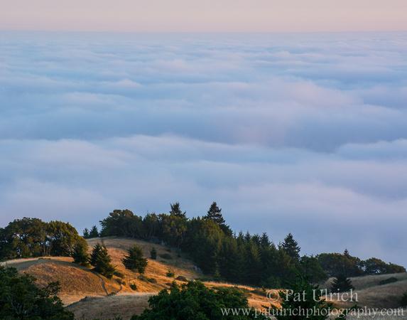Hillsides illuminated by a unset above the fog on Mount Tamalpais