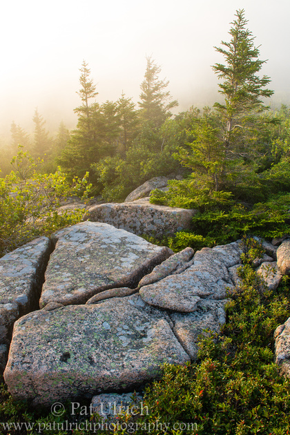 Photograph of a granite outcrop under fog at sunset in Acadia National Park